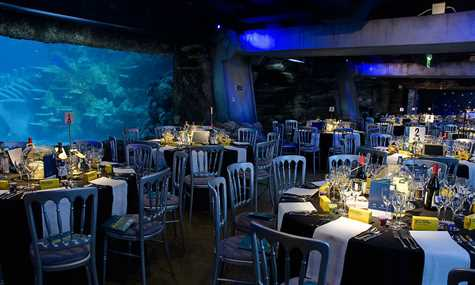 london aquarium tables